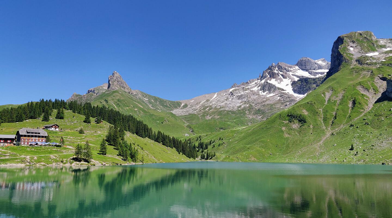 Wild Nature Switzerland